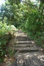 Walkway stairs to natural hot springs in Roseau Dominica.jpg