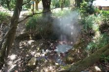Steaming natural sulfur hot springs in Roseau Dominica.jpg